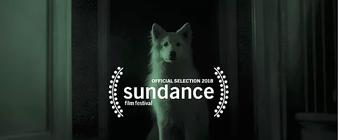 """""""Thursday Night"""" de Gonçalo Almeida selecionado para o Festival de Sundance"""